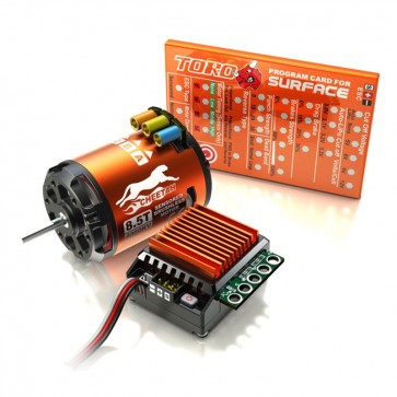 SkyRC Cheetah Sensored Brushless Motor and CS60 60A ESC 1/10 Combo