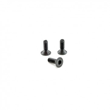 HobbyStar 540 Sensored Motor Timing Backplate Screws