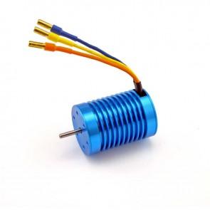 HobbyStar 3650 Brushless Sensorless Motor