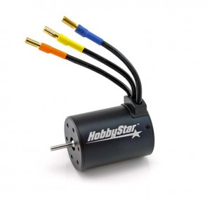 HobbyStar 3650 4-Pole Brushless Sensorless Motor, Waterproof